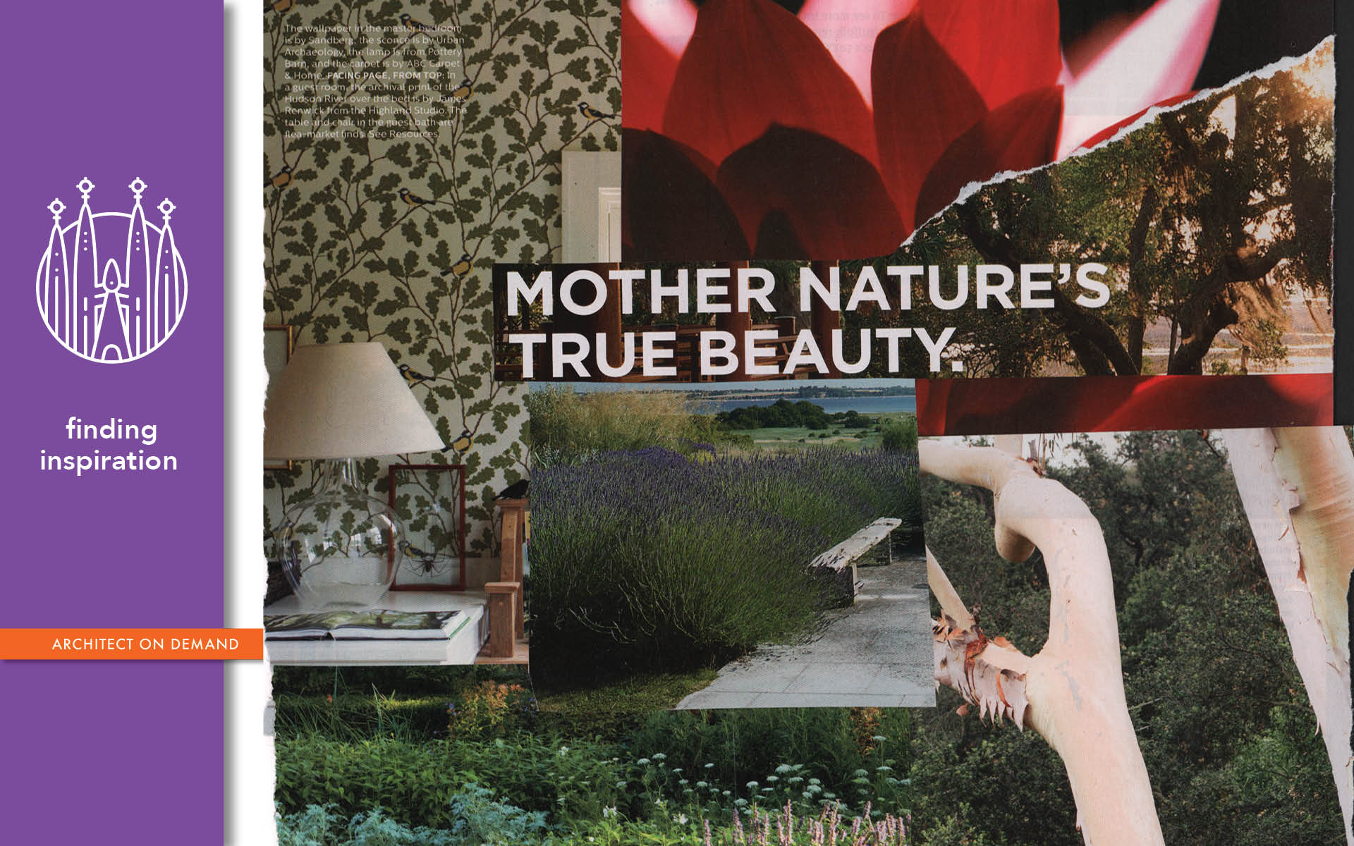nature-inspired-design, architect on demand, advice without strings