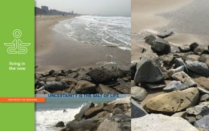 sentimental collectibles, beach pebbles, architect on demand, advice without strings